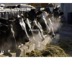 780 ha Farm for Sale